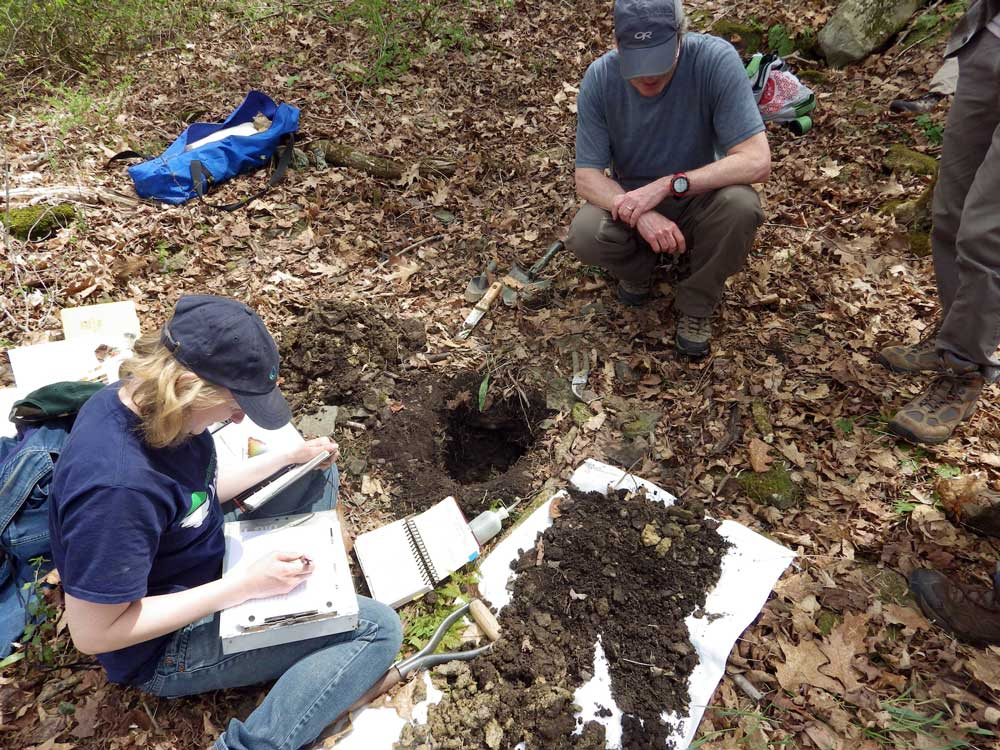 Scientists collecting soil information